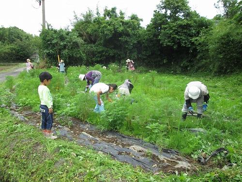 農地環境保全のための景観形成活動