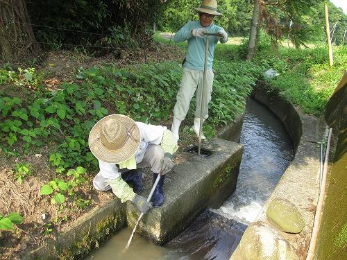 パイプライン取水口の点検