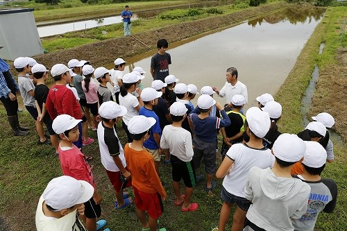 保全会役員による小学生への田植え説明